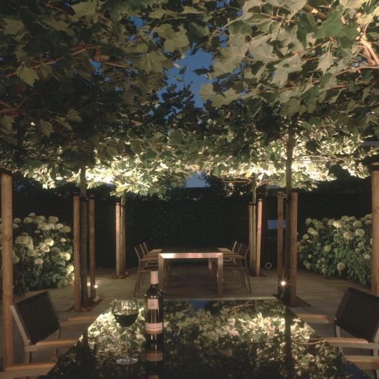 I love the lighting hidden up in the vines!