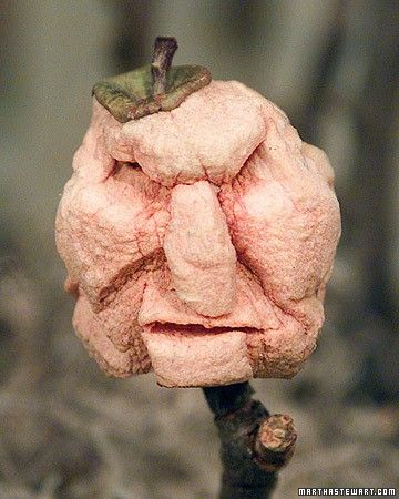 These shrunken heads, made from peeled, carved, and dried apples, are as spooky as the scariest Halloween masks -- and just as much fun to create.