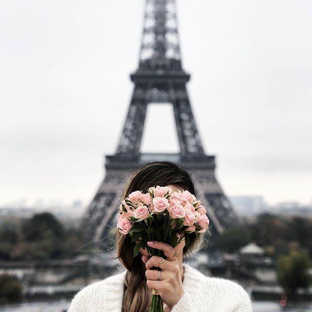 Image result for female flower eiffel tower