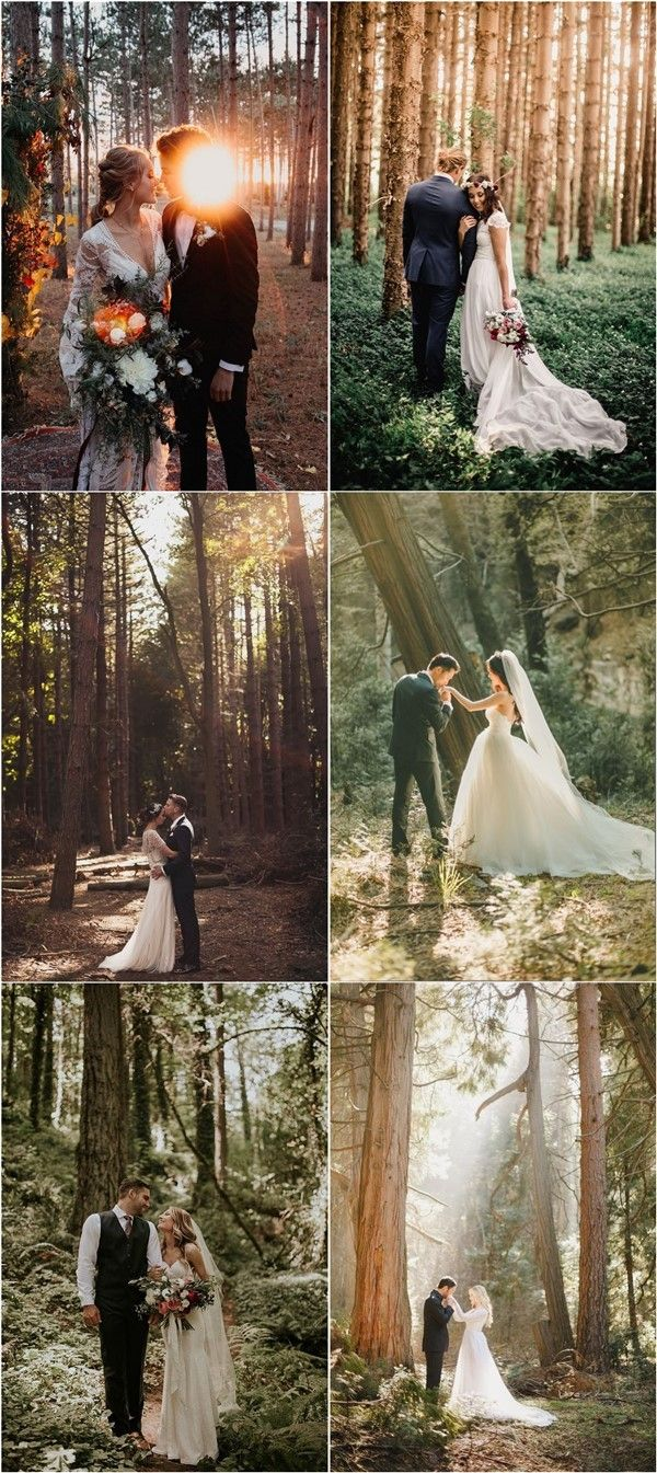 40+ Forest & Woodland Wedding ceremony Theme Concepts
