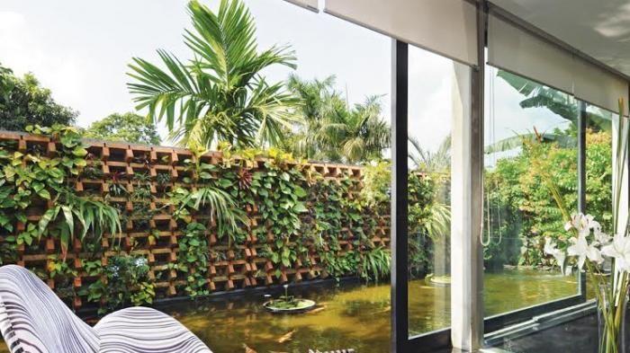 Taman Vertikal Belum Umum Dikenal di Yogyakarta