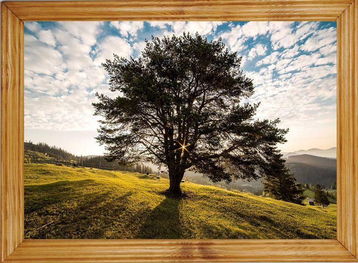 Piękne #obrazy na ścianę