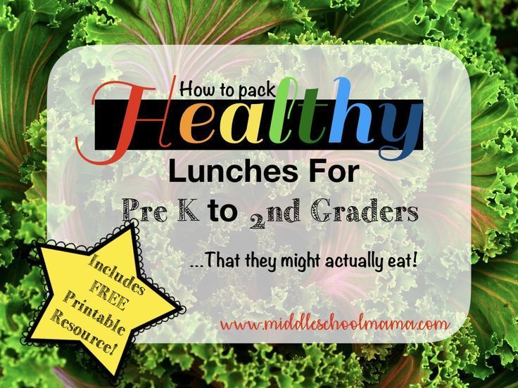 are school lunches actually healthy essay Are school lunches actually healthy don't you think that school lunches should start providing healthy lunches you will not like to be surprised by a hair or.