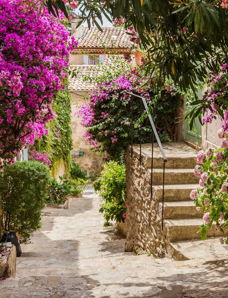 Bormes-les-Mimosas on the #French #Riviera