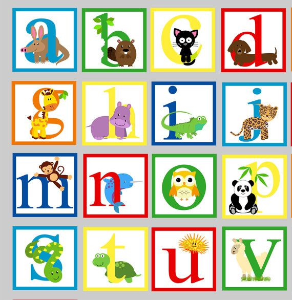 REUSABLE Animal Alphabet Wall Decal  by StudioWallStickers on Etsy, $115.00