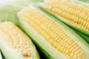 Macédoine d'épis de maïs