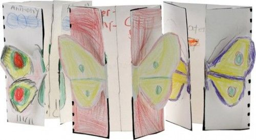 Life Cycle of a Butterfly Book Idea