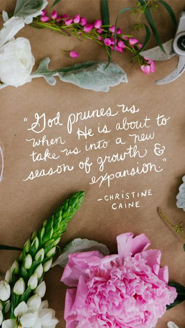 "God's Pruning... ""God prunes us when He is about to take us into a new season of growth and expansion."" ~ Christine Caine (This graphic is a free download made for phones & desktop wallpapers.) 