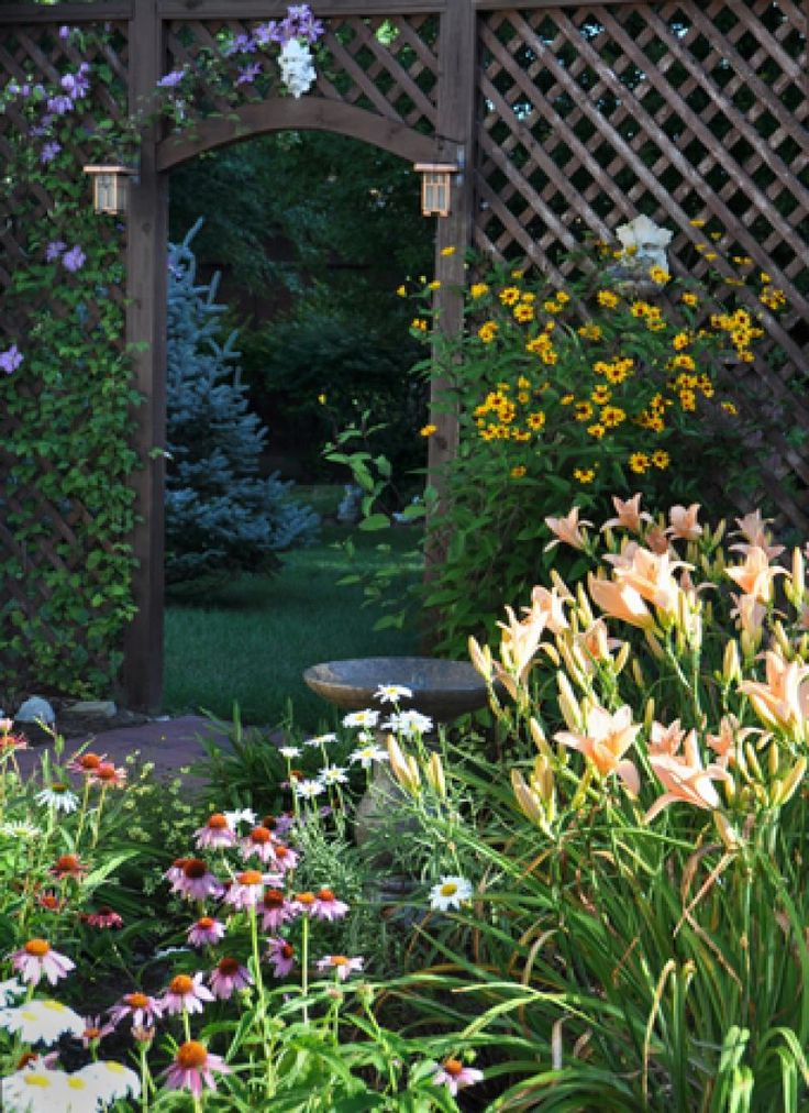 Daylily Home Gardening Ideas 15 Awesome Daylily