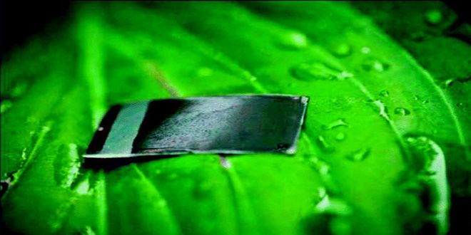 'Artificial leaf' gains the ability to produce energy from dirty water