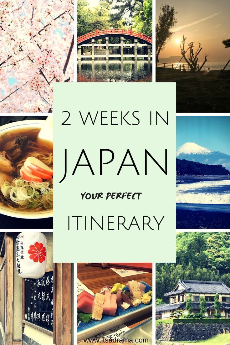 Japan is a beautiful country to travel around but with just two weeks to visit e…