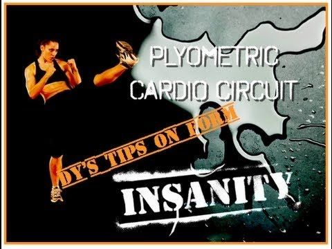 Insanity Workout - Insanity Plyometric Cardio Circuit Full Video [Day 2 - HD] - Official Shaun T - YouTube