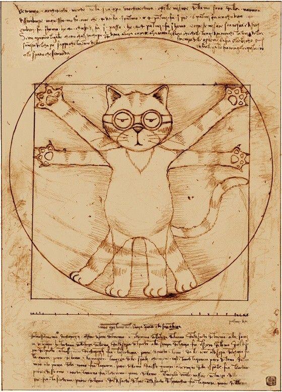 cat - Da Vinci
