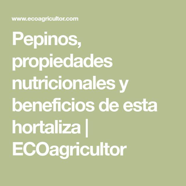 Pepinos, propiedades nutricionales y beneficios de esta hortaliza | ECOagricultor