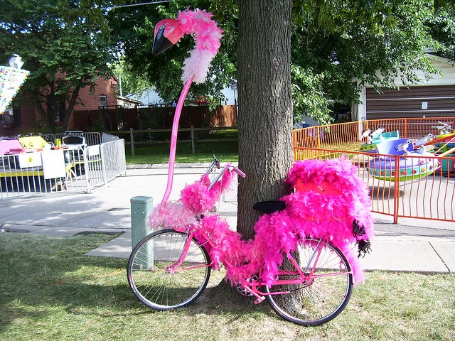 flamingo bike | Flickr - Photo Sharing! via Dan Murphy