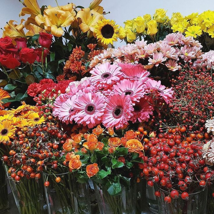 Krásny deň prajeme  #kvetysilvia #kvetinarstvo #kvety #jesen #love #instagood #cute #follow #photooftheday #beautiful #tagsforlikes #happy #like4like #nature #style #nofilter #pretty #flowers #design #awesome #door #home #handmade #flower #summer #candles #vintage #floral #naturelovers #picoftheday