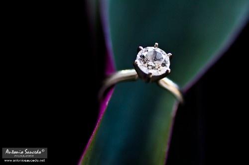 Ora che sei una delle fortunate ad avere una pietra preziosa al dito, è importante dare all'anello di fidanzamento il ruolo che merita nelle foto di nozze. Per voi, per mantenere un ricordo duraturo del vostro anello, vi diamo alcuni esempi di bellissime fotografie che illuminano in dettaglio l'anello di fidanzamento. Chiedete al vostro fotografo di deliziarvi con uno di questi scatti!