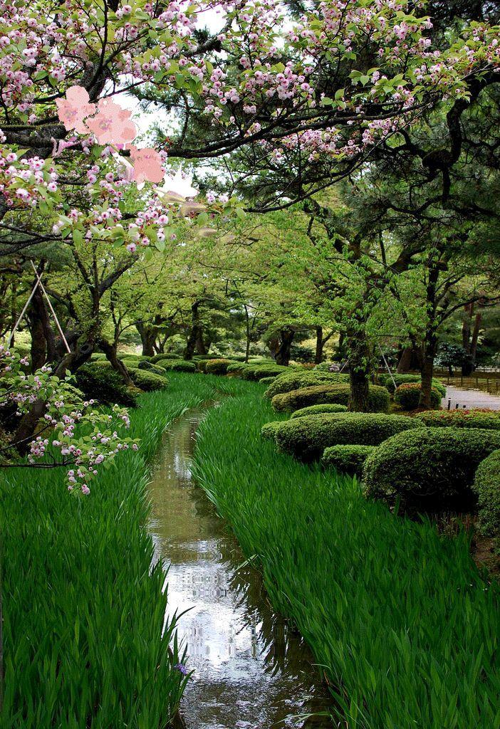 1000 images about jardins japonais animes on pinterest for Pin jardin japonais