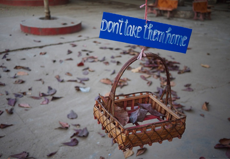 Don't Take Them Home