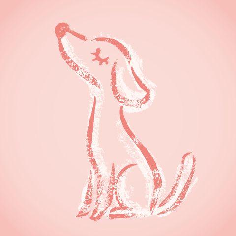Dog sketch by Toru Sanogawa, via Behance
