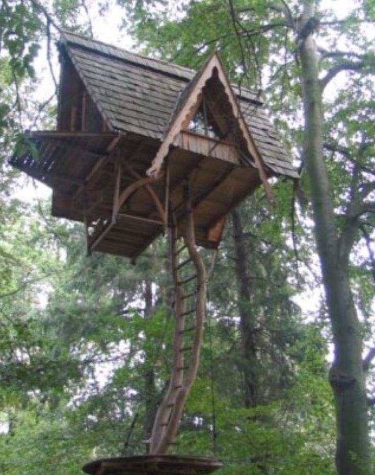 Best 302 Tree Houses ideas on Pinterest | Tree houses, Treehouses ...