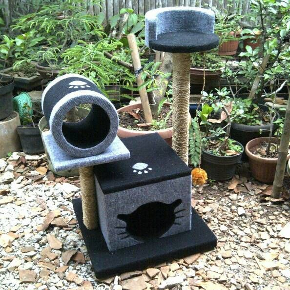 Cat scratching/cat condo/garukan kucing/mainan kucing/cat tree/cat toy. Kode JC 34 ukuran tinggi: 80cm lebar: 45X63cm Harga Rp.1.450.000 Kami menerima pemesanan CUSTOM ( mengikuti design keinginan anda atau dari design kami ) Hubungi kami : JL: Aselih Rt:10 Rw:01 Cipedak-Ciganjur Jagakarsa Jakarta-Selatan 12630 No:72 Telp: 087882372643 (Whatsapp)-02194653190 PIN BB 24E4F059, Line: shine_art3