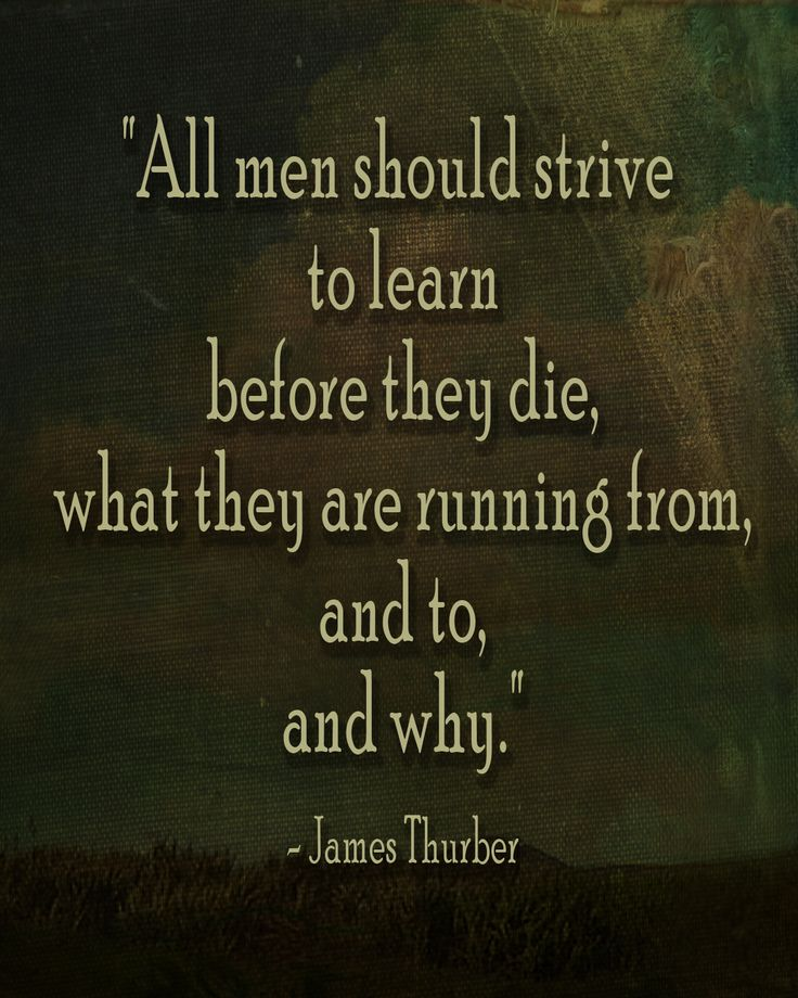 """""""All men should strive to learn before they die, what they are running from, and to, and why."""""""