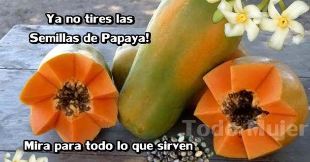 Semillas de Papaya o Lechosa : El Mejor Remedio Para la Salud Intestinal, el Hígado y Desintoxicación del Riñón