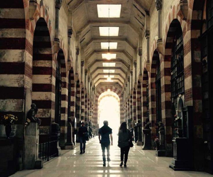 Carla de Bernardi: dal Cammino di Santiago al Cimitero Monumentale di Milano #LessIsSexy #CambiareVita #sostenibilità