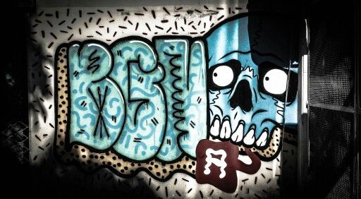 Frightened skull. Rio De Janeiro,  Brazil. Shot and edit by Monica Mikhael. https://flic.kr/p/nS2nie