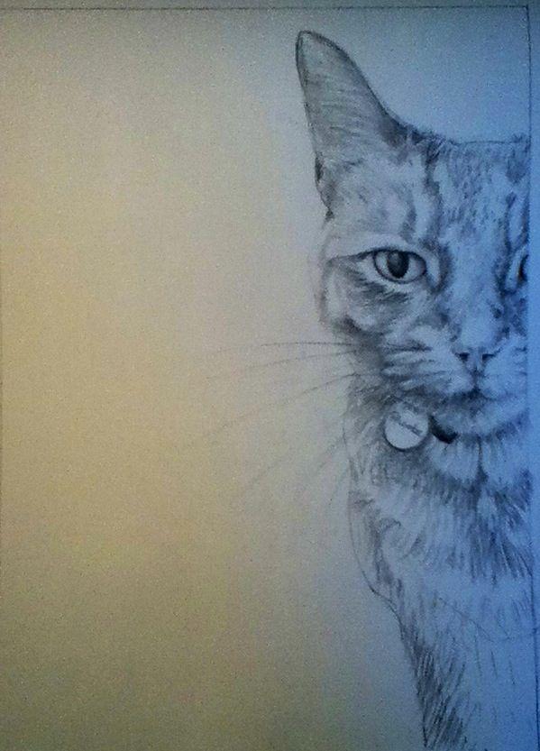 'Pheobe' - rough sketch