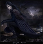 The Dubh Sidhe, or Dark Faeries, is a race of tricksters who often take the form of ravens. The Raven is considered one of the oldest and wisest of animals. In Celtic mythology they have the power of prophecy and also act as a messengers for the Irish and Welsh gods.