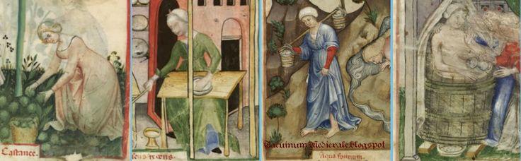 Nouvelle acquisition latine 1673, Tacuinum Sanitatis di Parigi fol. 11, Raccolta delle castagne; fol. 58, Mercante di burro; fol. 96, acqua; fol. 97, donna che fa il bagno.