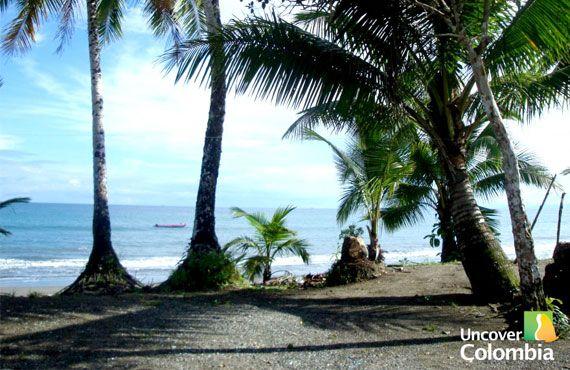 Uncover Colombia: Nuqui in the Pacific Coast