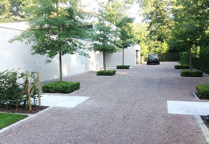 contemporary gravel driveway lined with trees set into clipped low formal hedges