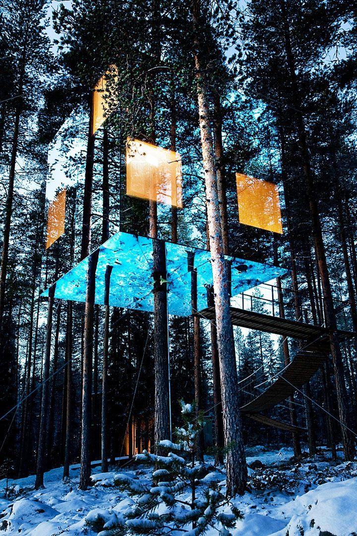 Maisons perchées dans les arbres : MIROCUBE camouflé dans la forêt !