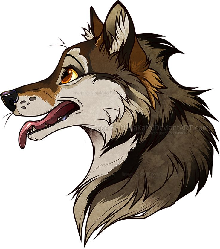 Wolf Drawings: 25+ Best Anime Wolf Drawing Ideas On Pinterest