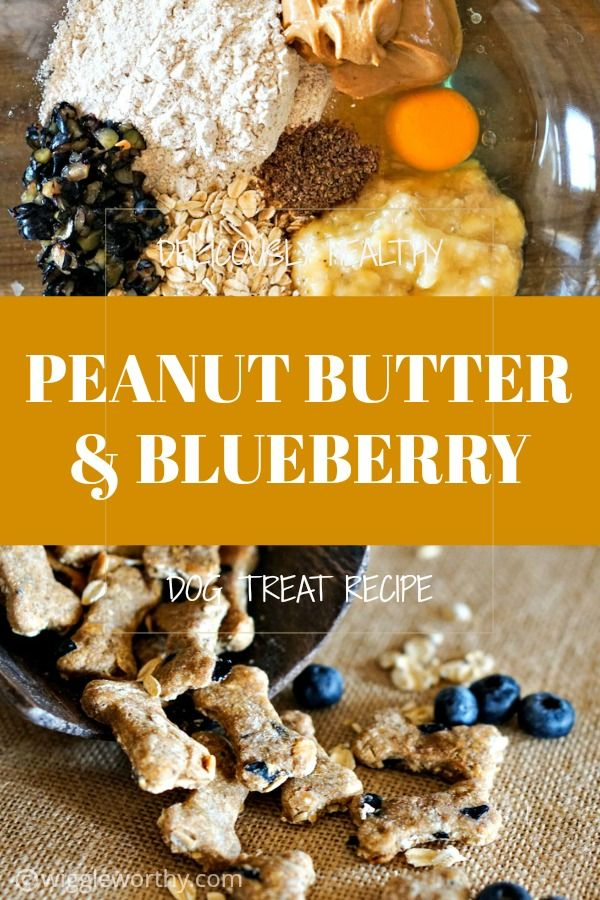 Peanut Butter Blueberry Banana Dog Treats Recipe Homemade