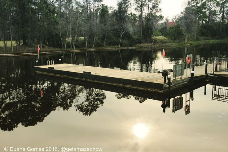 Here are a few photos of the lovely Florida fauna and flora and natural beauty of the Walt Disney world port Orleans French quarter resort in Orlando Florida how very tranquil and relaxing. The boat jetty to catch shuttle boats to other Disney locations  #travel #usa #florida #orlando #waltdisney #disney #wdw #resorts #portorleans #frenchquarter #riverside #photooftheday #tagsforlikes #followme #canon700D #sigmalens #holiday #magical #picoftheday #sun7 #theage by getamazednow