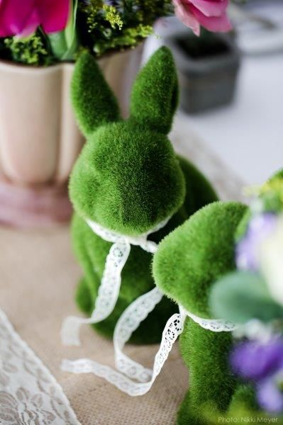 Green grass rabbits