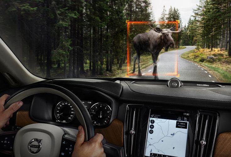Bezpieczeństwo w aucie według Volvo
