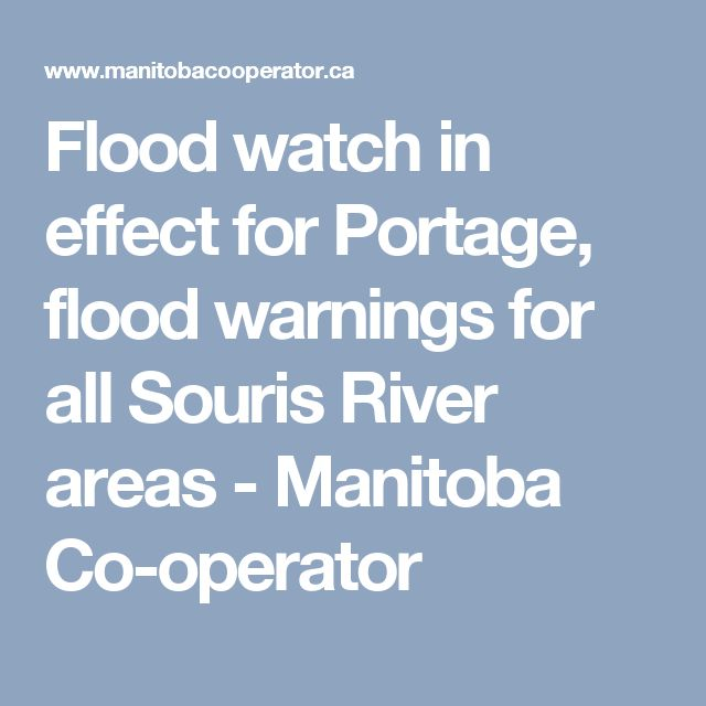 Flood watch in effect for Portage, flood warnings for all Souris River areas - Manitoba Co-operator