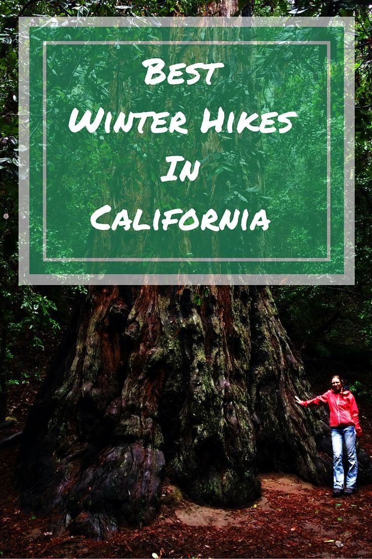 What we loved the most about our winter hikes in California is that after some rain everything is lush green and there's water in the otherwise dry creeks and waterfalls. It's like everything comes alive!
