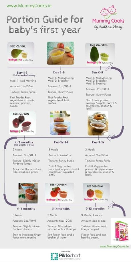 Mummycooks Printable Guide to Baby's first year