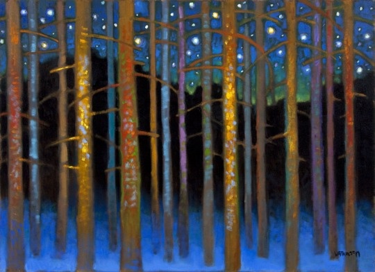 From the North, to architecture, to rock music, to medicine and now to light-filled art.  The inspiring journey of artist Terry Watkinson. Canadian art