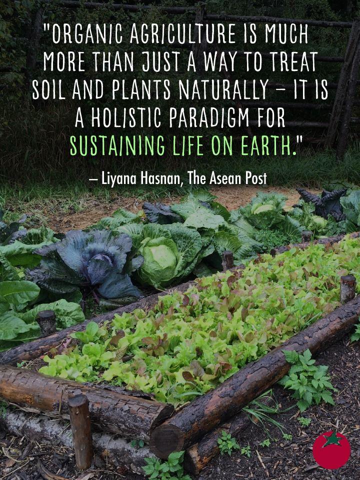 1d4d66fcb3026586a07cdb1a7aad765a - Texas Organic Farmers And Gardeners Association