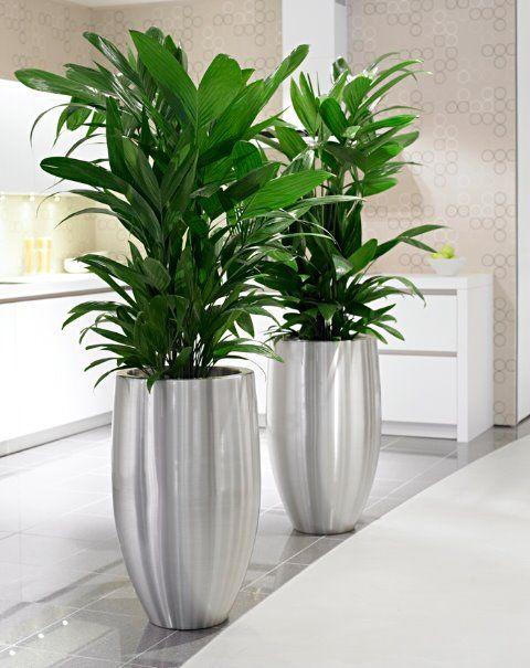 Lune RVS en aluminium plantenbakken