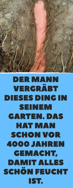 Bewährt: uralte Methode, Pflanzen vor Austrocknung zu bewahren. Heinrich Beth
