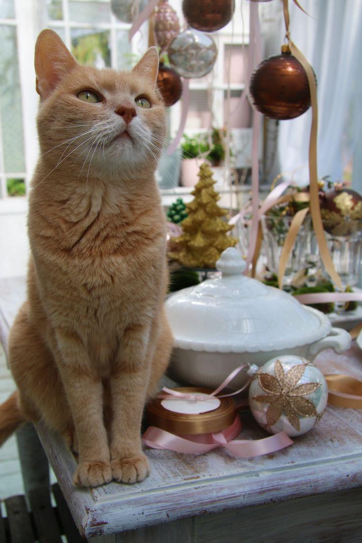Skleněná vánoční koule hnědá s geometrickým dekorem  vánoční skleněná koule – hnědá barva s dekorem. Velikost 8 cm.  Číslo artiklu: 1989   http://www.glassor.cz/sklenena-vanocni-koule-hneda-s-geometrickym-dekorem