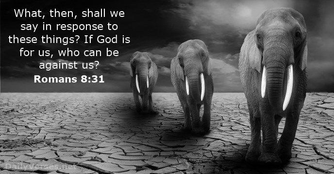 Romans 8:31 kjv